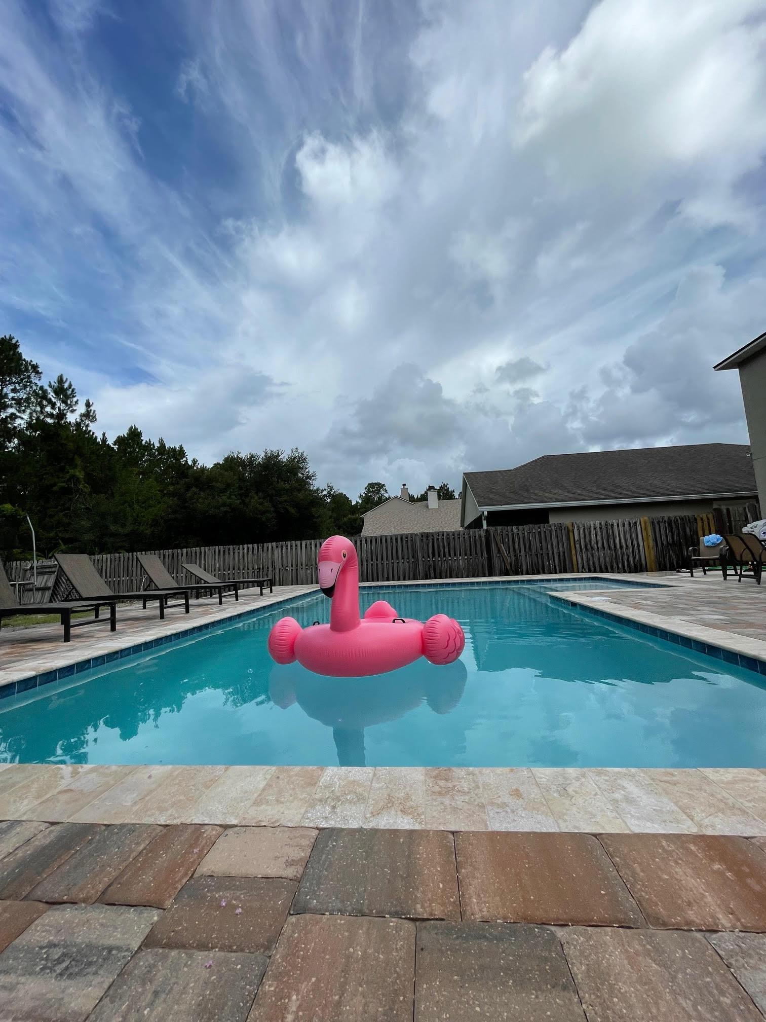 swimming pool affordable inground pool